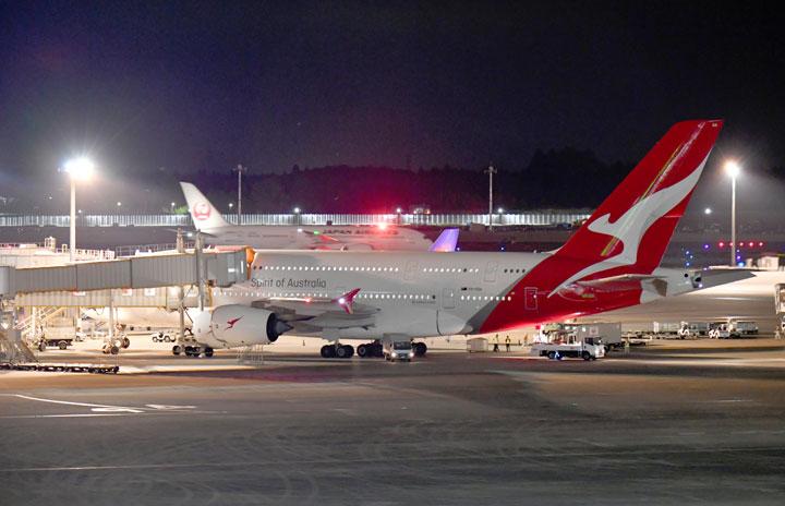 JALとカンタス航空、共同事業申請 豪州NZー日本間
