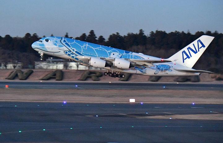 ANA、A380で初日の出フライト 成田発着